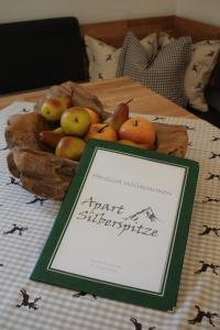 Apart Silberspitze - Apartment - Zams