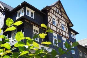 Hotel Beck - Igelshieb