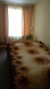 obrázek - Apartment on Azina 20/2