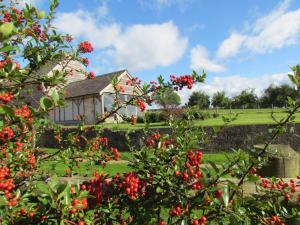 Lowe Farm Bed & Breakfast (14 of 63)