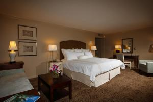 Dauphine Orleans Hotel (2 of 39)