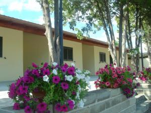 Auberges de jeunesse - Hotel Samarcanda