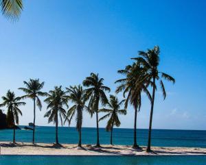 Royalton Saint Lucia Resort & Spa - All inclusive, Rezorty  Gros Islet - big - 34