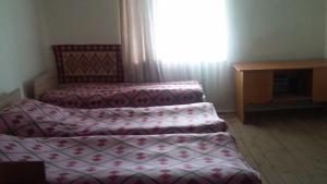 Tishe, Hostels  Omalo - big - 25