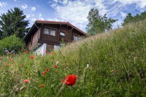 Werrapark Resort Ferienhausanlage Am Sommerberg - Einsiedel