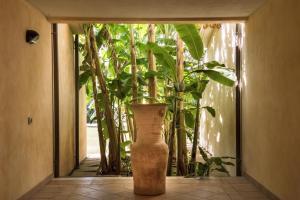 Lantana Resort Hotel & Apartments (33 of 97)