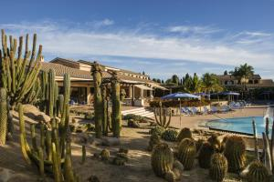 Lantana Resort Hotel & Apartments (31 of 97)