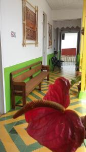 Hostal Madre Tierra, Мини-гостиницы  Хардин - big - 36