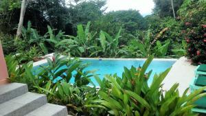 Tobago Hibiscus Golf Villas & Appartments, Apartmanhotelek  Mount Irvine - big - 44