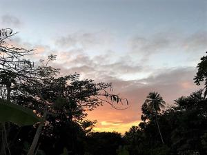 Tobago Hibiscus Golf Villas & Appartments, Apartmanhotelek  Mount Irvine - big - 29
