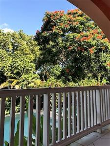 Tobago Hibiscus Golf Villas & Appartments, Apartmanhotelek  Mount Irvine - big - 32