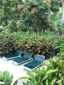 Tobago Hibiscus Golf Villas & Appartments, Apartmanhotelek  Mount Irvine - big - 34