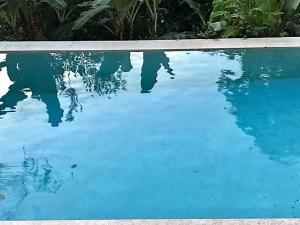 Tobago Hibiscus Golf Villas & Appartments, Apartmanhotelek  Mount Irvine - big - 36