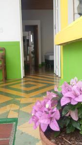 Hostal Madre Tierra, Мини-гостиницы  Хардин - big - 11
