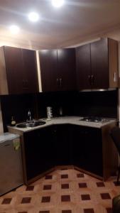 Dadu's Apartment, Апартаменты  Тбилиси - big - 17