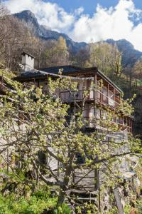 Bed and Breakfast da Toldo