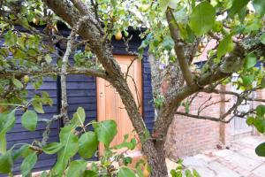 Magpies Lodge, Bed and breakfasts  Slinfold - big - 41