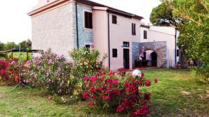 Appartamento in Casale Toscano - AbcAlberghi.com
