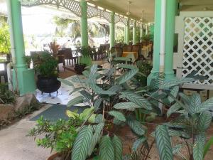 Palm Beach Hotel, Szállodák  Grand'Anse Praslin - big - 63