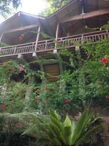 obrázek - Kupu-Kupu Garden Guest House & Cafe