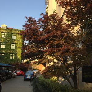 Henry's Apartment - Old French Concession, Apartmanok  Sanghaj - big - 10
