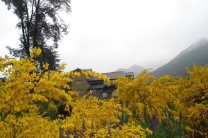 La Roca de la Patagonia, Hostince  Villa La Angostura - big - 28