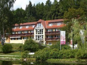 Parkhotel Bad Brambach - Bad Brambach