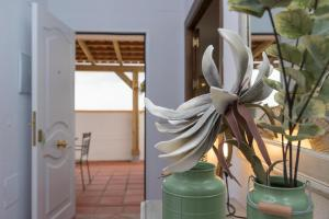 El Mirador de Bellavista, Dovolenkové domy  Conil de la Frontera - big - 12