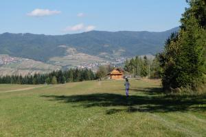Domek na Jagodowym Wzgórzu