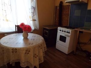 Liela street apartment - Myza Lasmani