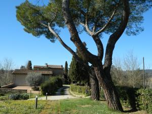 La Castellaccia - AbcAlberghi.com