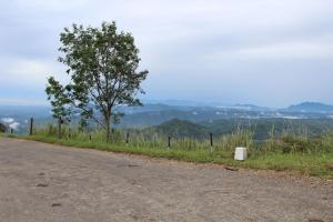 Ayubowan Holiday Resort, Resorts  Kalupahana - big - 24