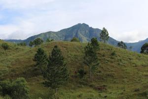 Ayubowan Holiday Resort, Resorts  Kalupahana - big - 29