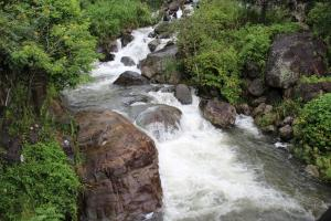 Ayubowan Holiday Resort, Resorts  Kalupahana - big - 34