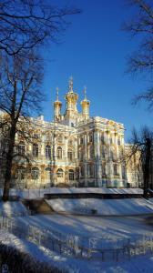 Apartment Near the Catherine Palace - Aleksandrovka