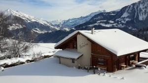 Chalet Ermina Bed & Breakfast - Accommodation - Leysin