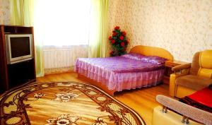 Apartment Krasnoarmeyskaya 14 - Tosey