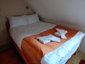 obrázek - Sport Hotel