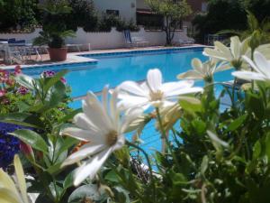 Hotel Splendid, Hotely  Diano Marina - big - 94