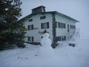 Peer Gynt Ski Lodge - Hotel - Perisher Valley