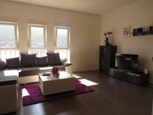 2 bedroom Apartment Jakov