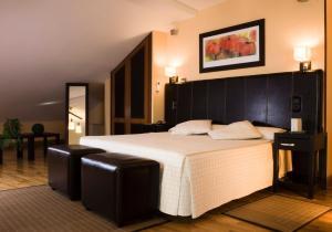 Sercotel Infanta Isabel Hotel (16 of 48)