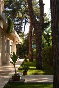 Hotel Mediterraneo, Hotels  Marina di Pietrasanta - big - 29