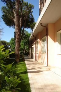 Hotel Mediterraneo, Hotels  Marina di Pietrasanta - big - 12