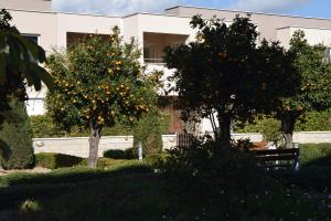 Zephyros Apartments, Apartmanok  Mandriá - big - 32