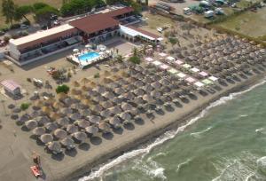 Beach Club Ippocampo - AbcAlberghi.com