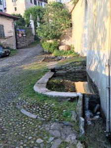 obrázek - Bungalow Fontaine Bleue