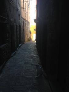 Tre Passi dal Mare, Affittacamere  Corniglia - big - 43