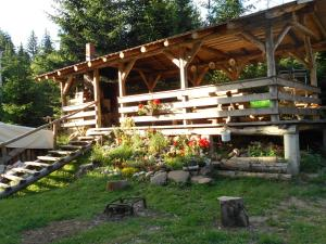 Cabana Filip - Accommodation - Cavnic