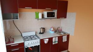 Apartment GrInn 45 on Kommunalnaya - Pskov